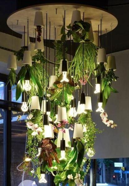 indoor garden 00