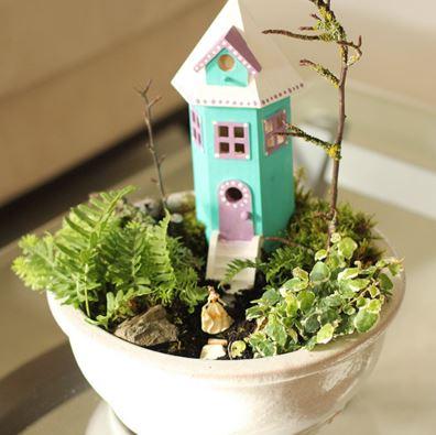 indoor garden 44