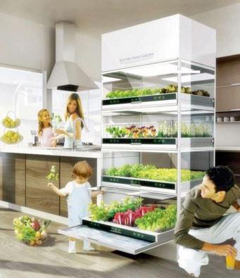 indoor garden 55