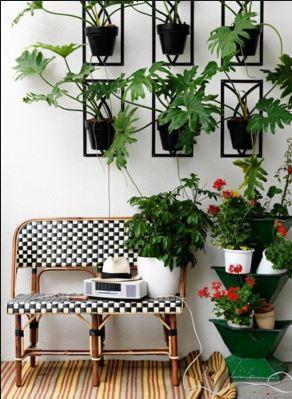 indoor garden 66