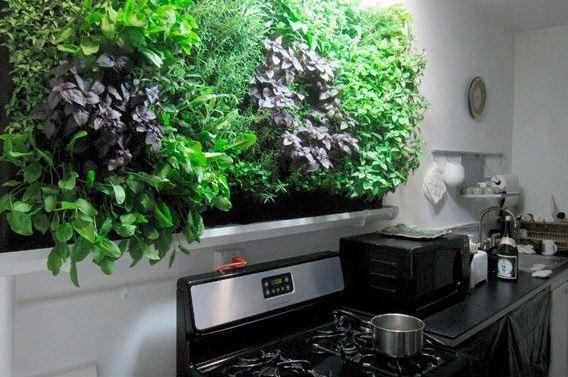 indoor garden 88