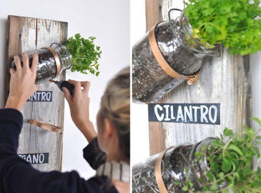 indoor gardening 3