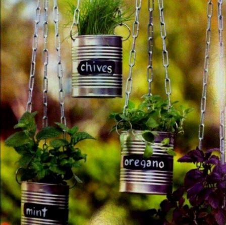 indoor gardening 5