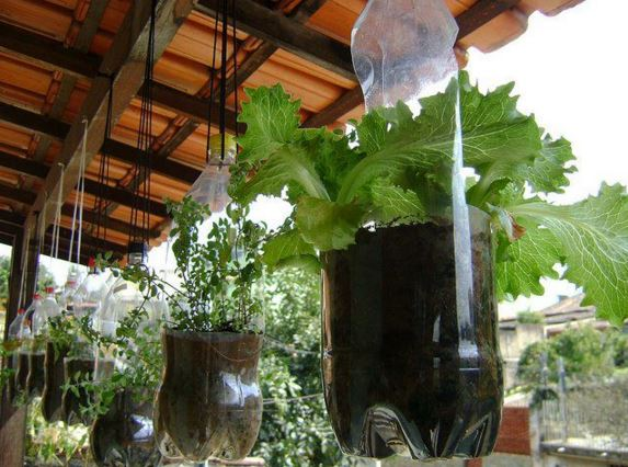 Urban Garden Ideas 3 potted hanging plants garden wall Urban Gardening Ideas 11
