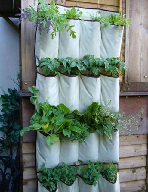 urban gardening ideas 6